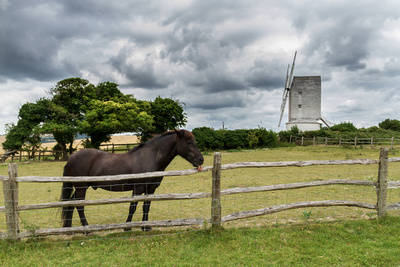 Horse and Ashcombe Postmill
